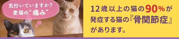 12歳以上の猫の90%が発症する猫の『骨関節症』があります。